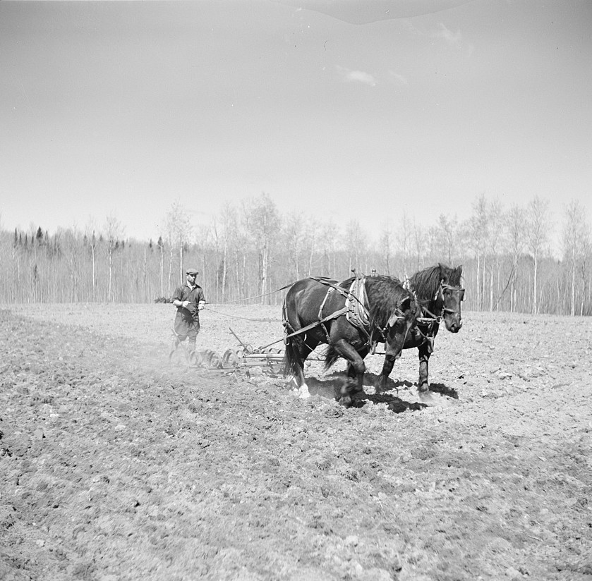 Michigan farmer plowing field - lee russell