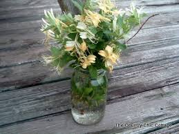honeysuckle mason jar
