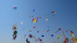 When was the last time you flew a kite? This may inspire you to do it again