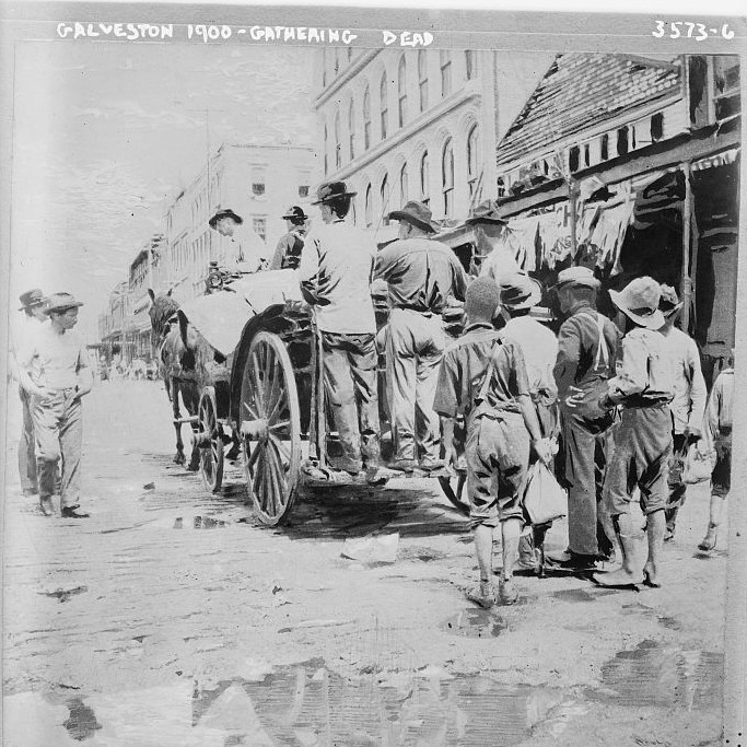 Galveston 1900 - gathering dead