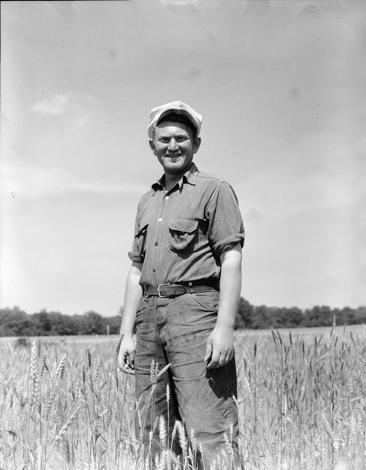 Homesteader, farmer, who has been working on the community farm since 1934. Hightstown, New Jersey june 1936 dorothea lange
