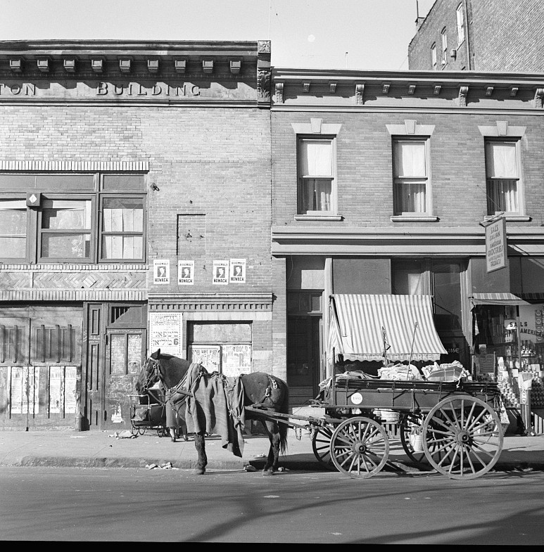 bronx tenament where homesteaders came from dec. 1936 rothstein