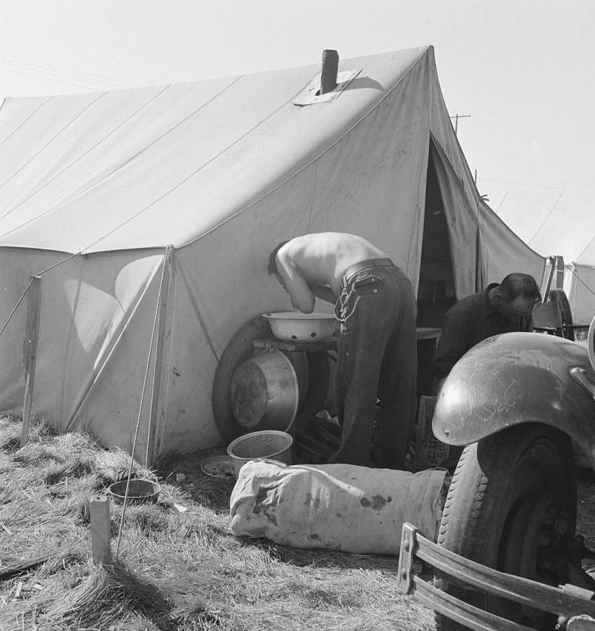 living condition potato sheds2