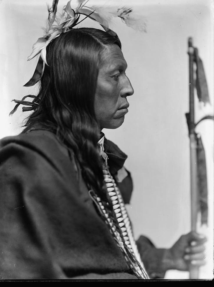 Flying Hawk, Sioux American Indian