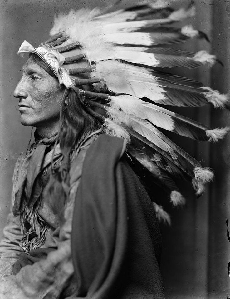 Whirling Horse, American Indian2