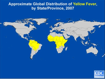 yellow-fever-map