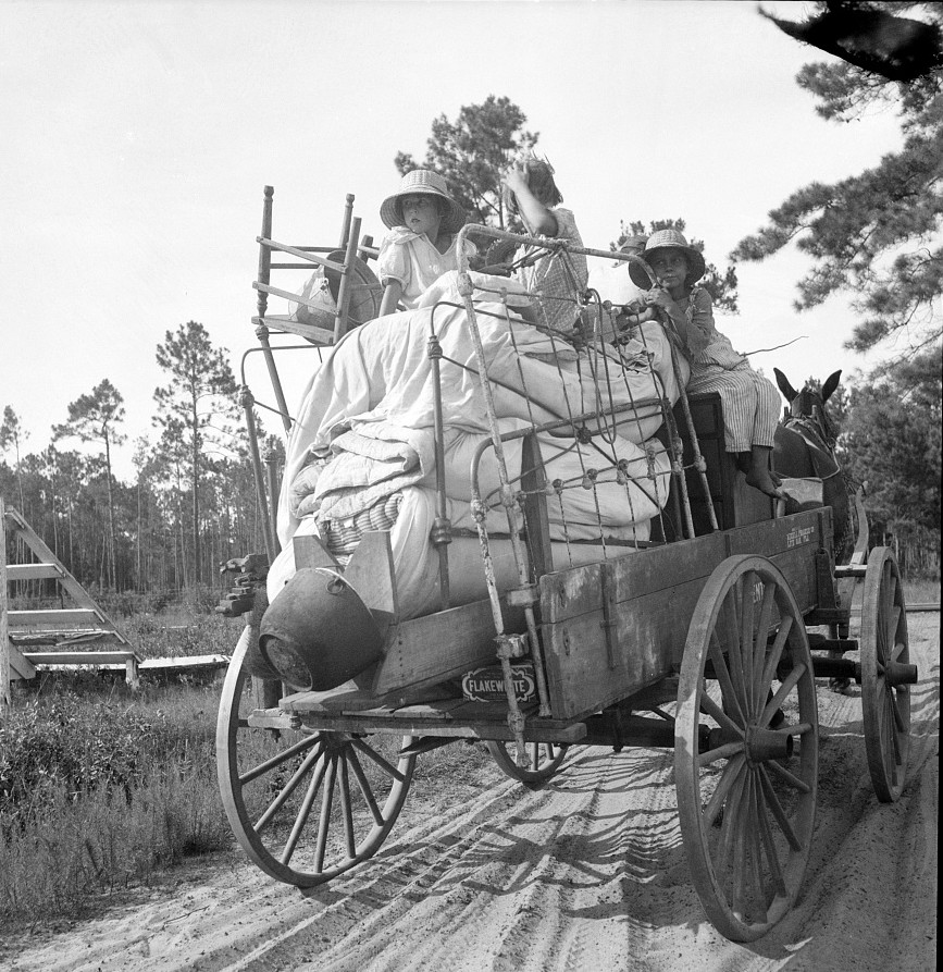2Moving day in the turpentine pine forest country. Northern Florida July 1936 by Dorothea Lange