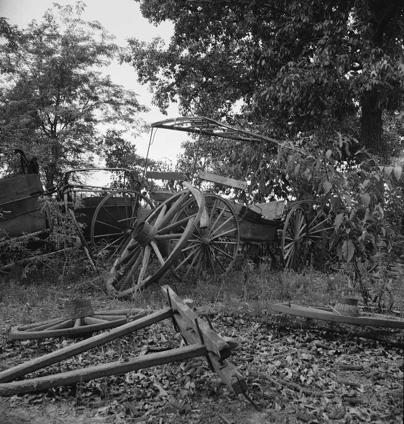 Abandoned coaches and wagons behind the old blacksmith shop on the Wray Plantation. Greene County, Georgia 1937 dorothea lange
