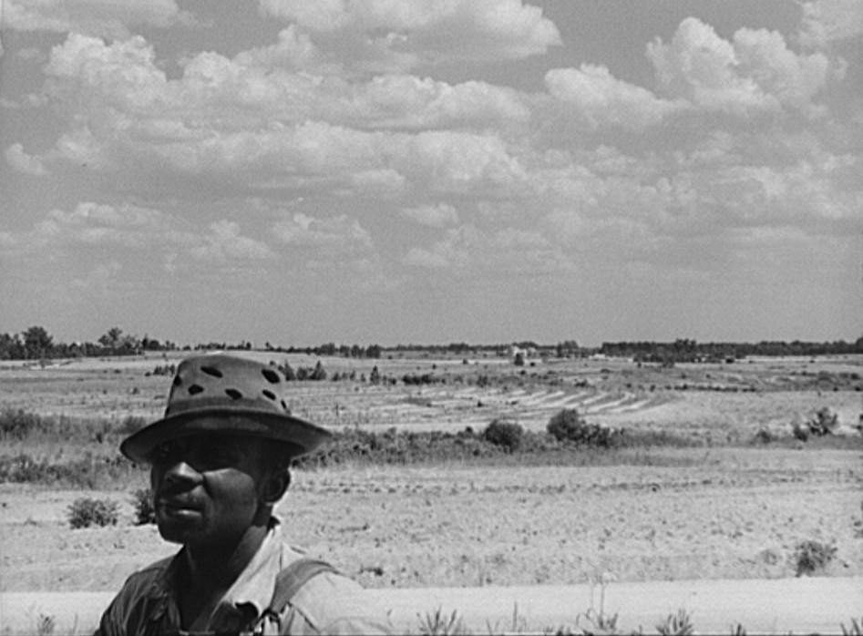 Black tenant farmer with landscape of the Jackson farm near White Plains, Greene County, Georgia
