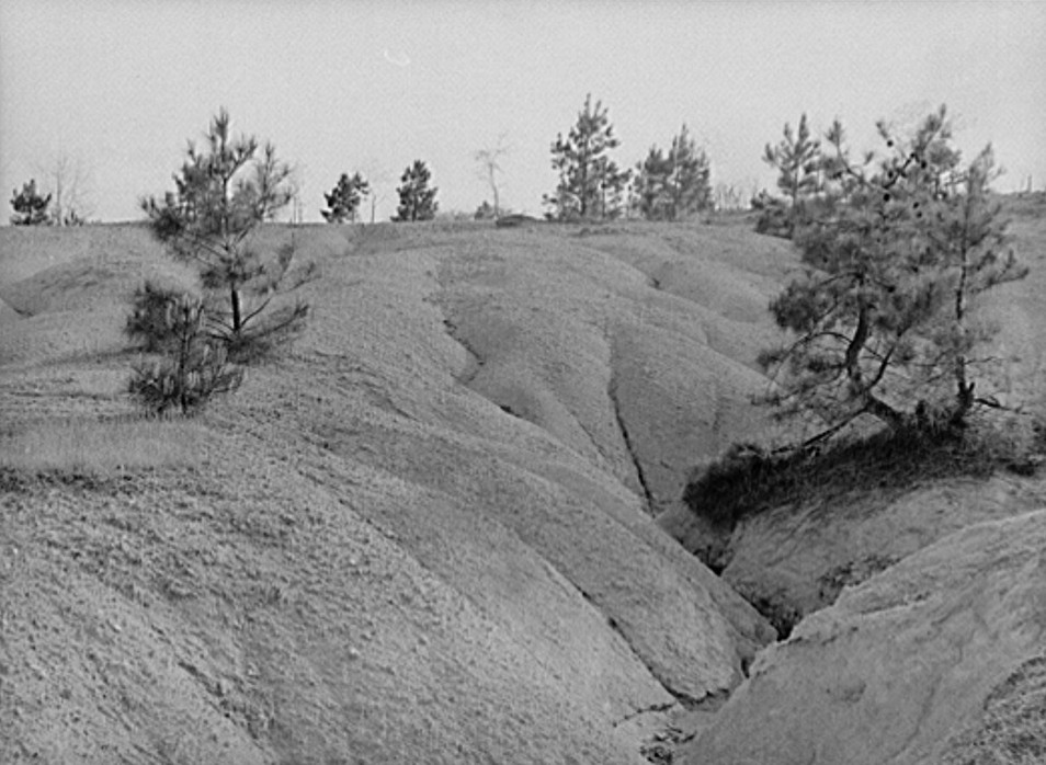 Eroded land. Greene County, Georgia may 1939