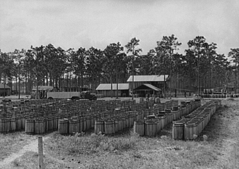 Florida Turpentine camp 1939 by Marion Post Walcott