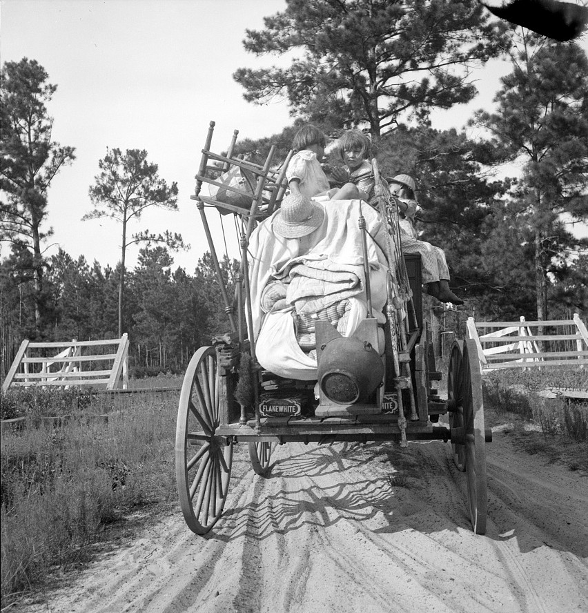 Moving day in the turpentine pine forest country. Northern Florida July 1936 by Dorothea Lange