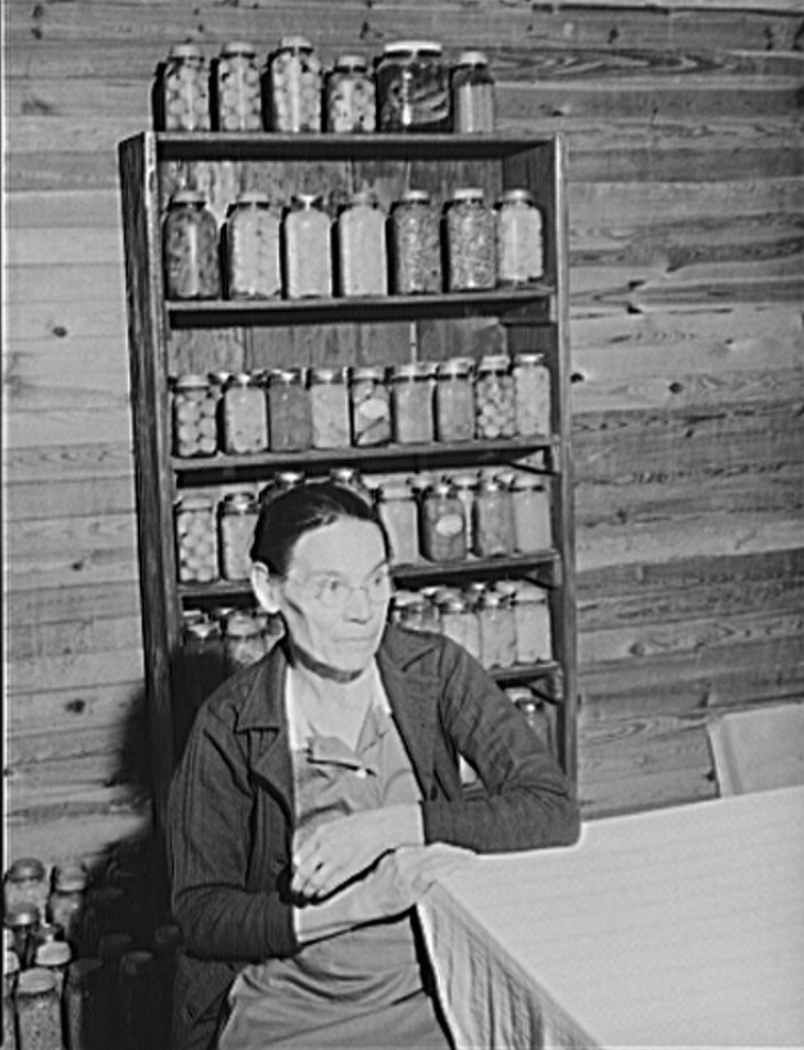 Mrs. Lloyd Clements, FSA (Farm Security Administration) borrower living on the Jackson place, near Mosquito crossing, Greene County, Georgia