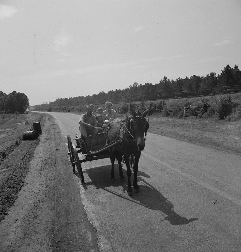 Sharecropper family near Hazlehurst, Georgia3 1937 lange