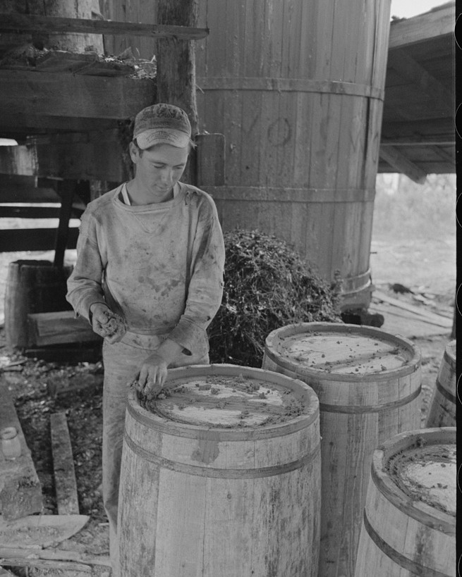 Worker at turpentine still caulking barrels for resin, State Line, Mississippi 1938 by Lee Russell