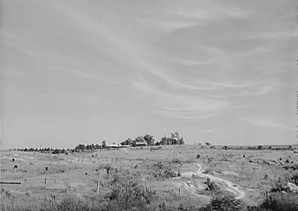 jackson plantation jack Delano