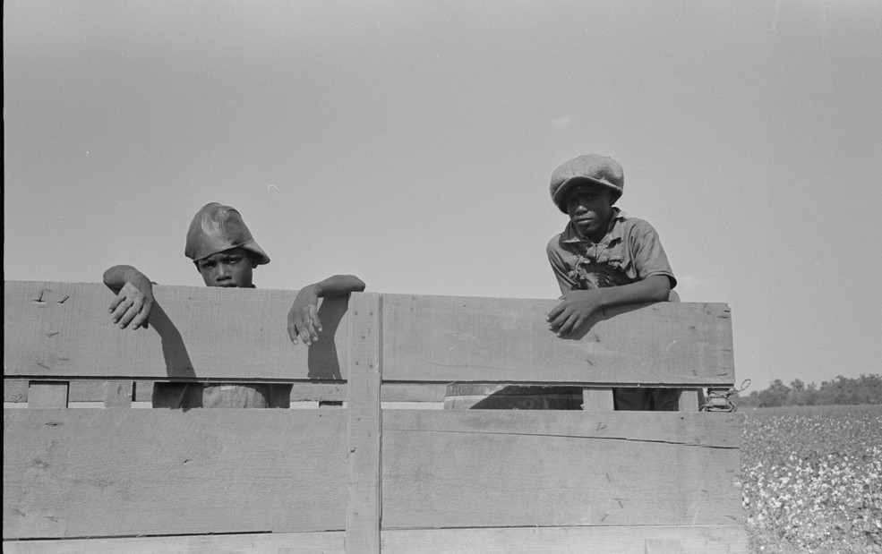 Boys waiting for cotton in cotton truck Lake Dick Project, Arkansas