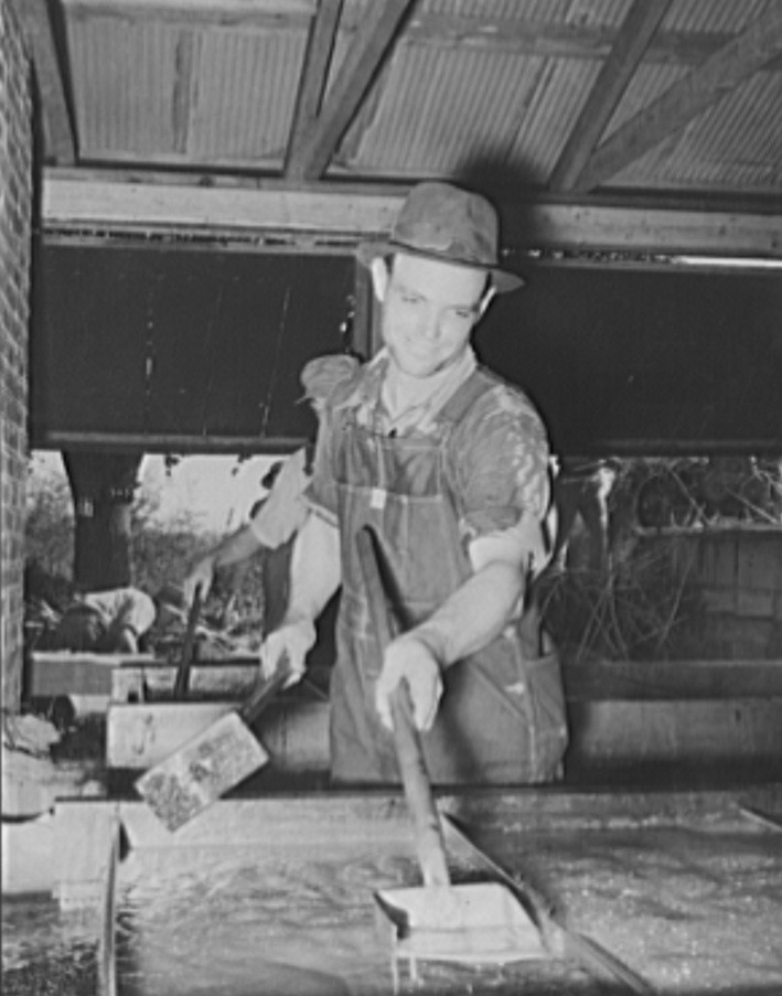 Cooperative farmer at sorghum mill. Lake Dick Project, Arkansas