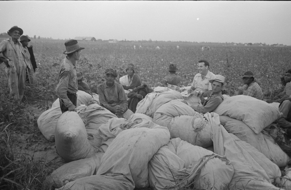 Day laborers, cotton pickers, waiting to be paid off at end of day's work5. Lake Dick Project, Arkansas