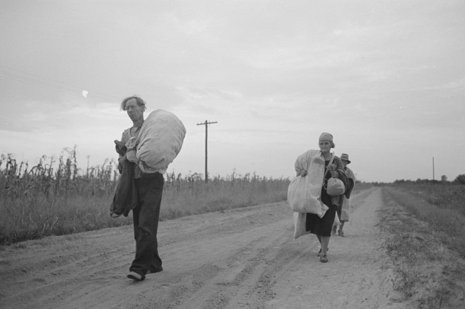 Day labors, and famiies return from a long day in the field picking cotton at Lake Dick