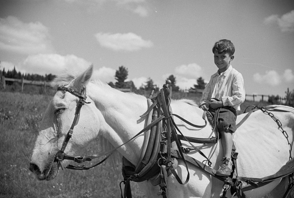 Farm boy and horse east of Lowell, Vermont2