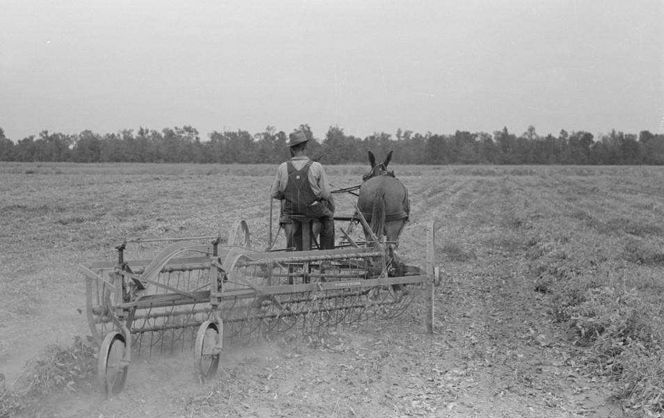 Farmer Lake Dick Project, Arkansas by Russell Lee Oct 19387
