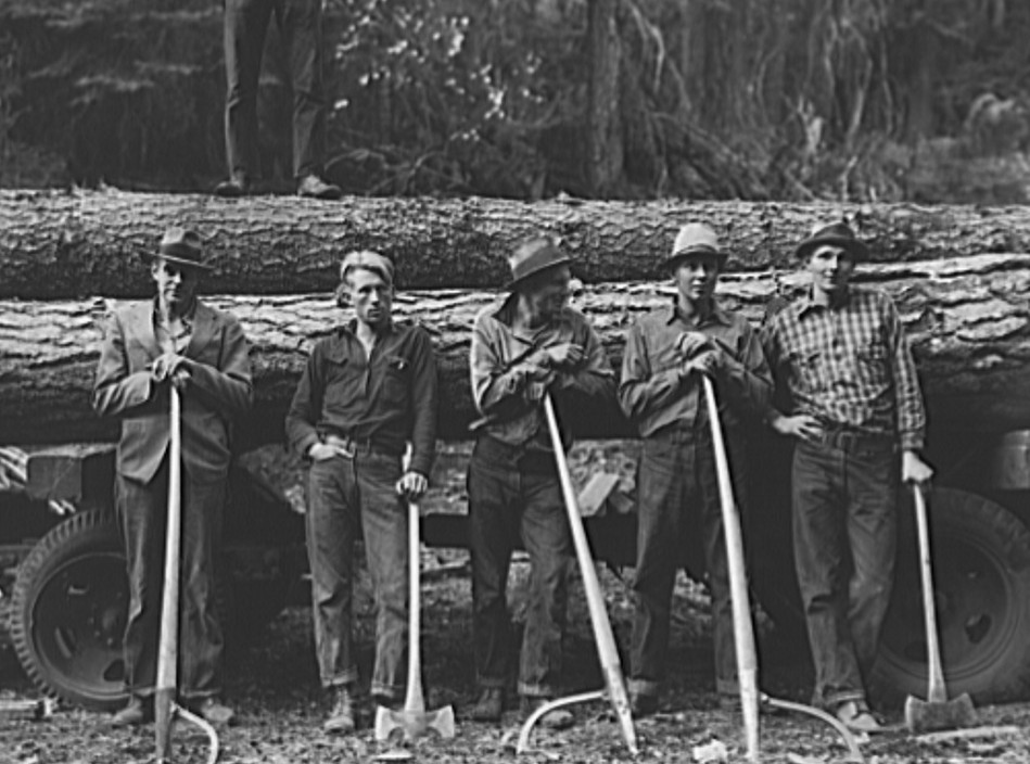 Five Idaho farmers, members of Ola self-help sawmill co-op, in the woods standing against a load of logs ready to go down to their mill about three miles away