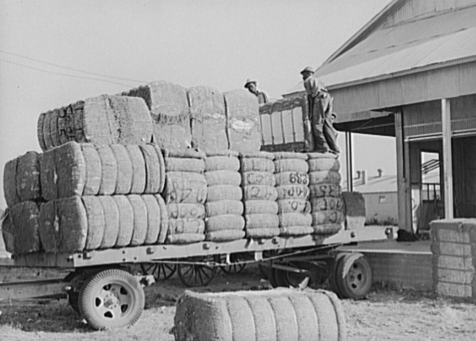 Loading bales of cotton onto truck from gin. Lake Dick Project, Arkansas