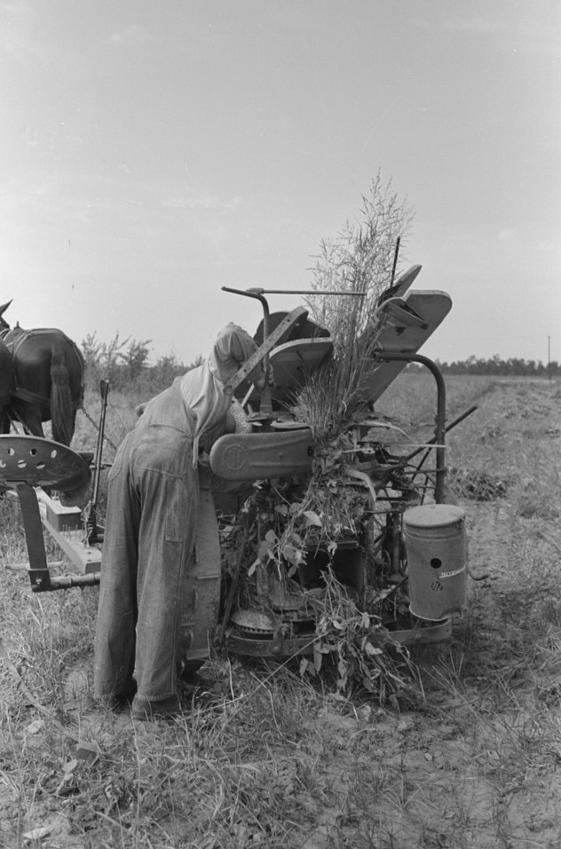 Member of Lake Dick Cooperative Association repairing mowing machine, Arkansas