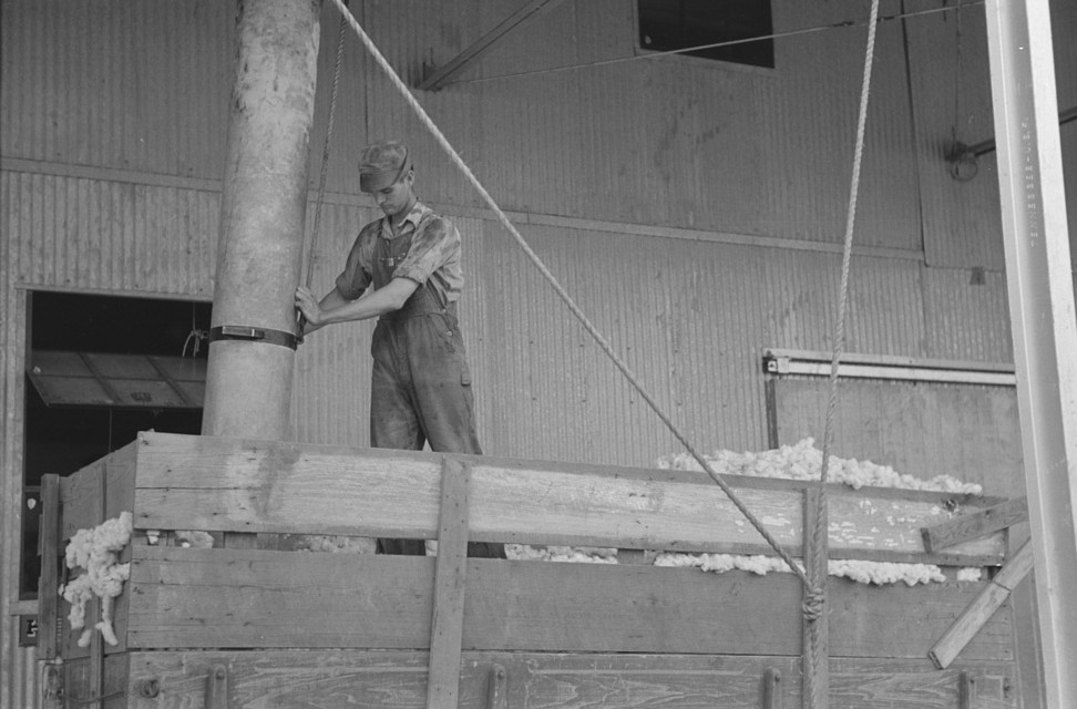 Member of cooperative association directing suction pipe for elevating cotton from wagon, Lake Dick Project, Arkansas
