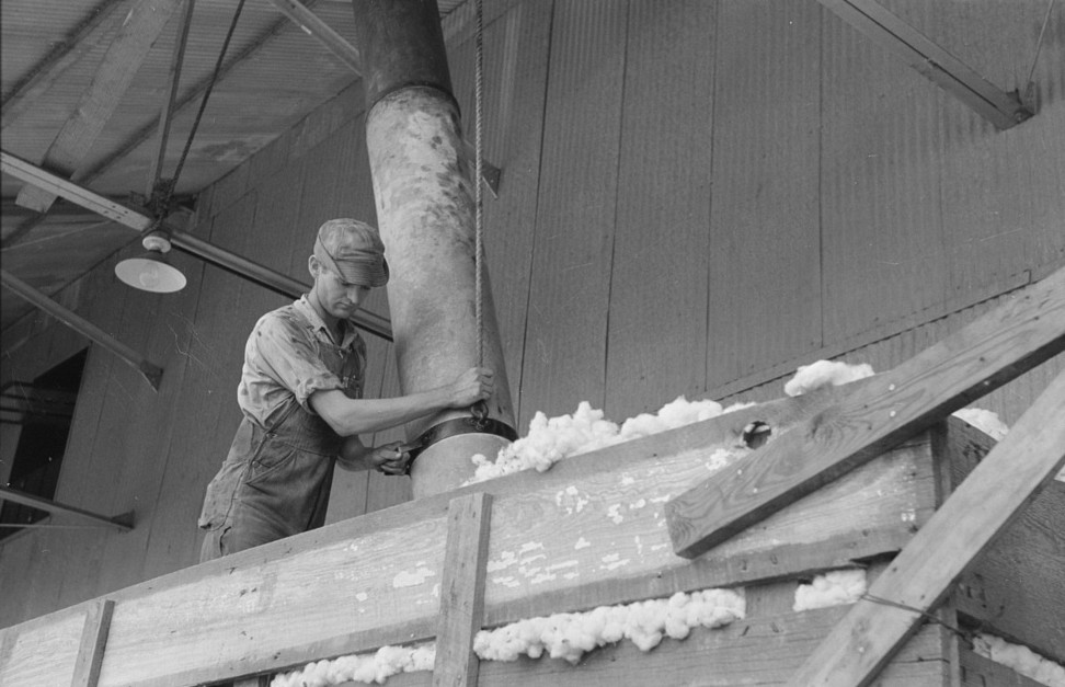 Member of cooperative association directing suction pipe for elevating of cotton from wagon, Lake Dick, Arkansas