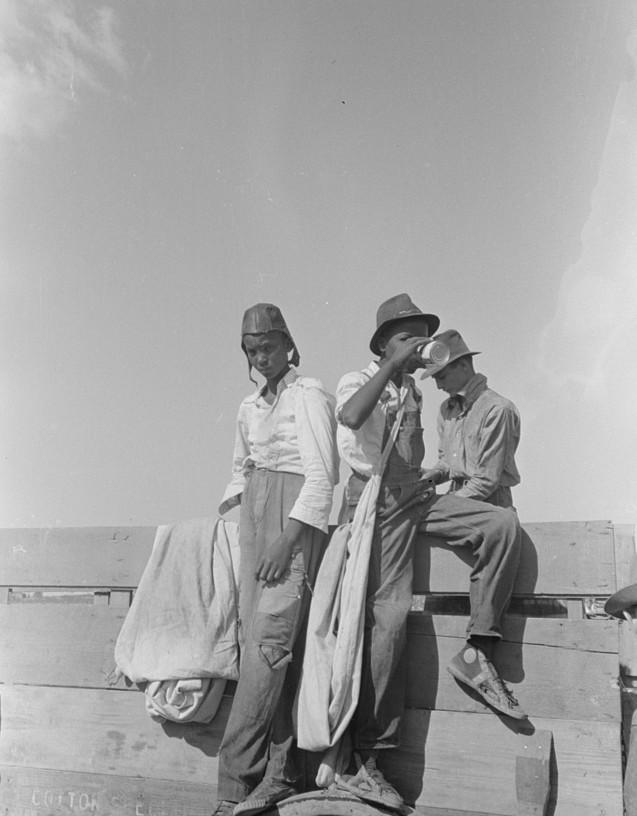 Negro cotton pickers 1938