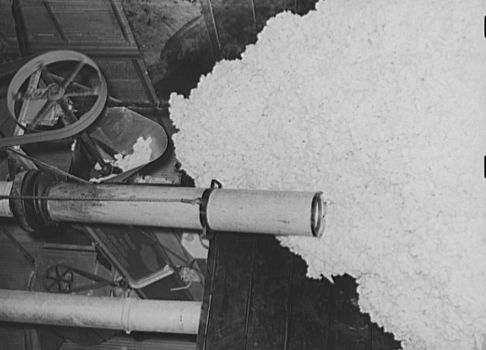 Suction pipe and raw cotton at gin. Lake Dick Project, Arkansas