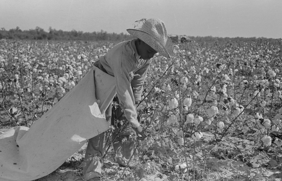 This man lived in Pine Bluff, Arkansas and was paid 75 cents a day for 100 pounds of cotton