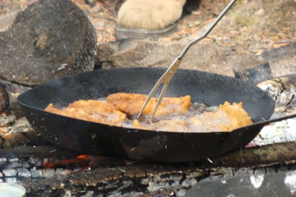 cook fish over campfire
