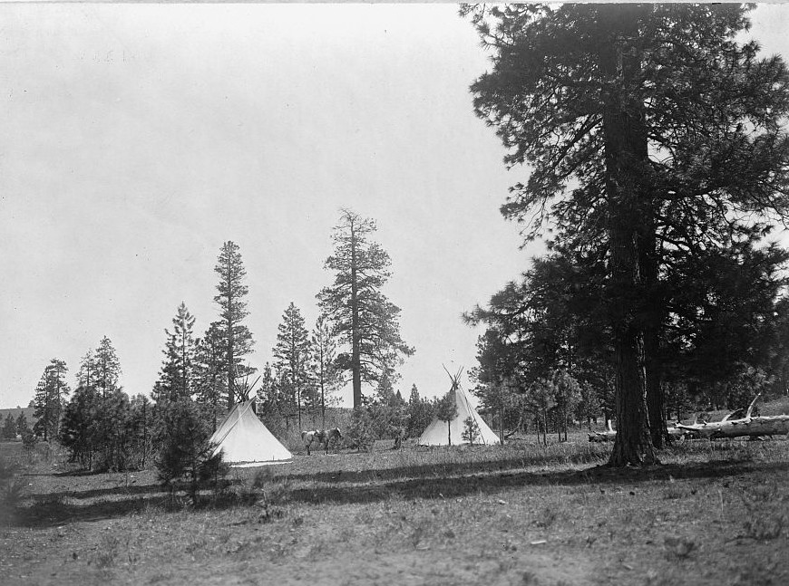 A mountain camp--Yakima by photographer Edward S. Curtis ca. 1903
