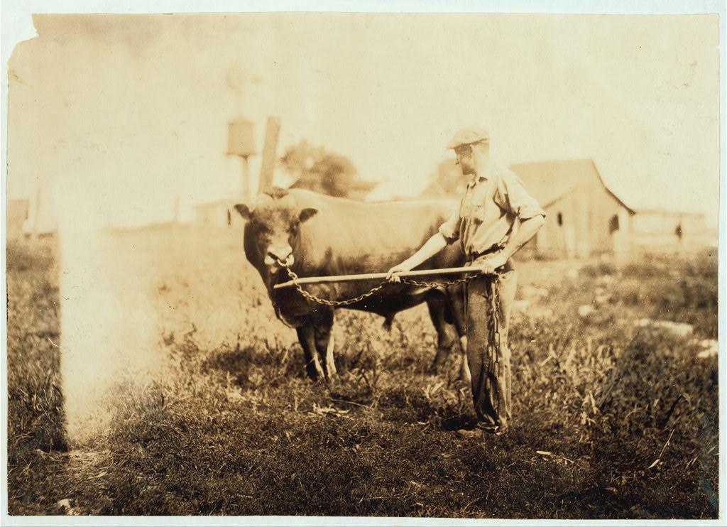 Dairyman in Kentucky