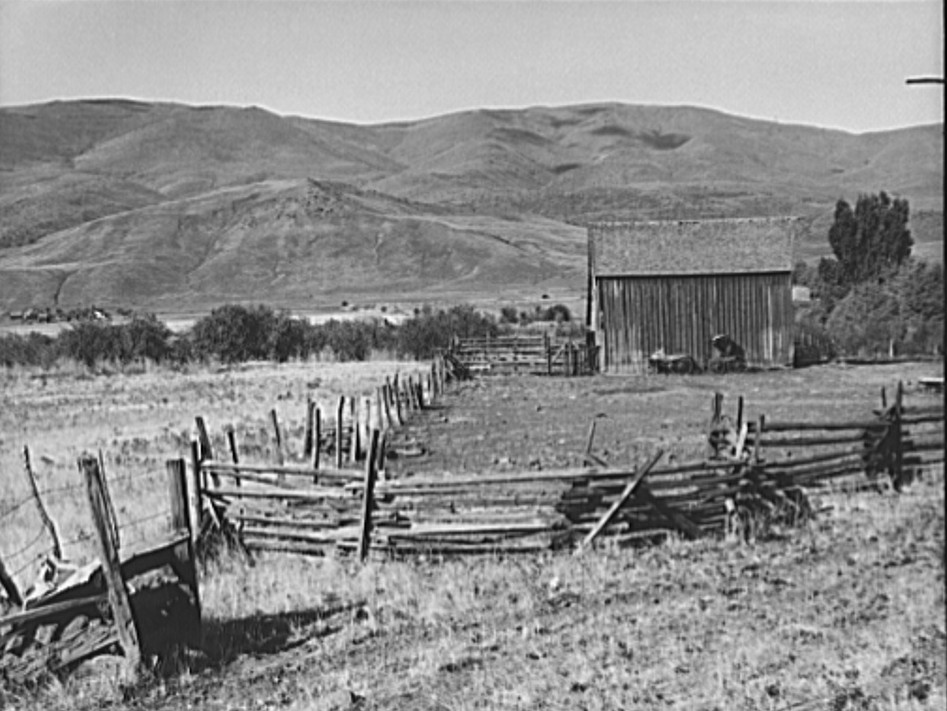 Farmyard in Squaw Creek Valley. Ola self-help sawmill co-op. Gem County, Idaho. Old wagon and buggy against the barn was used for mail until 1921