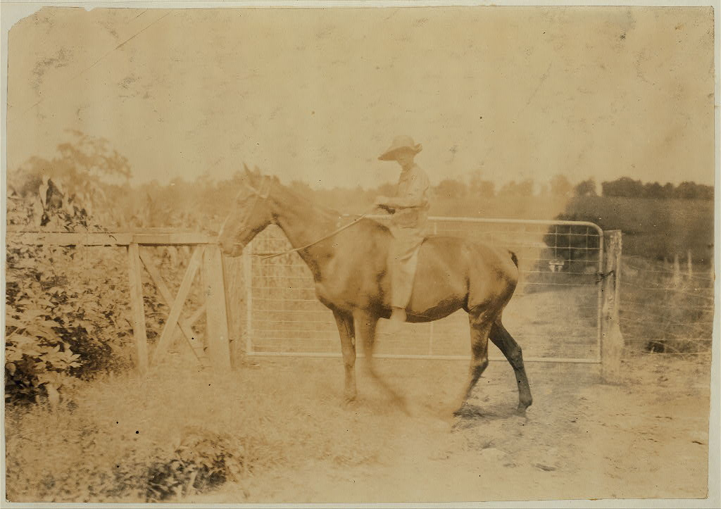 John Aldridge, 14 years old. Father, Hense Aldridge, R. Route 1, Winchester. Driving horse home. Works on tobacco. Expects to start school in couple of weeks. Clark Co., Ky. Location Clark Co.--Winch