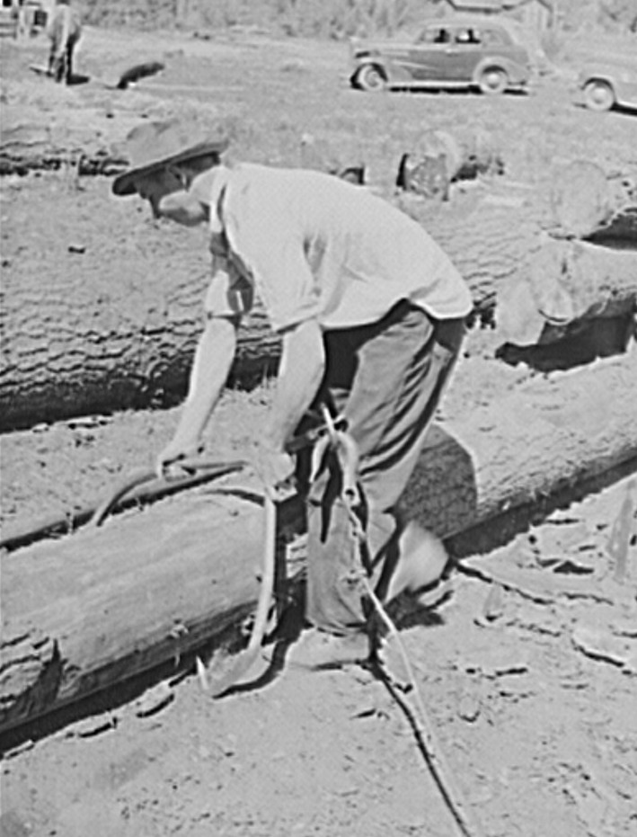 Ola self-help cooperative. A member places a hook on a log