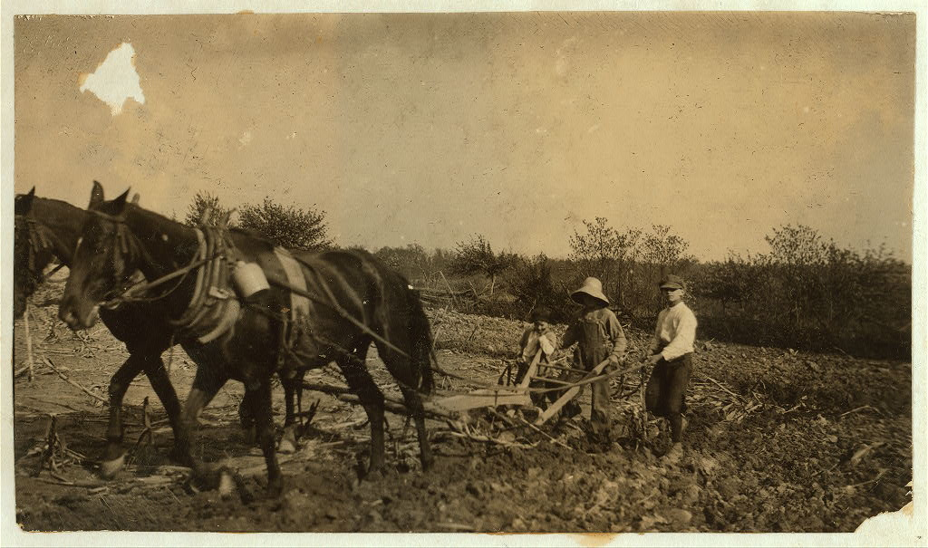 Willie Nall, 11 years old; Raymond Jones, 10 years old; Denver Jones, 5 years old; plowing on farm. They had just finished a job of hauling. Lewis Wickes Hine 1916