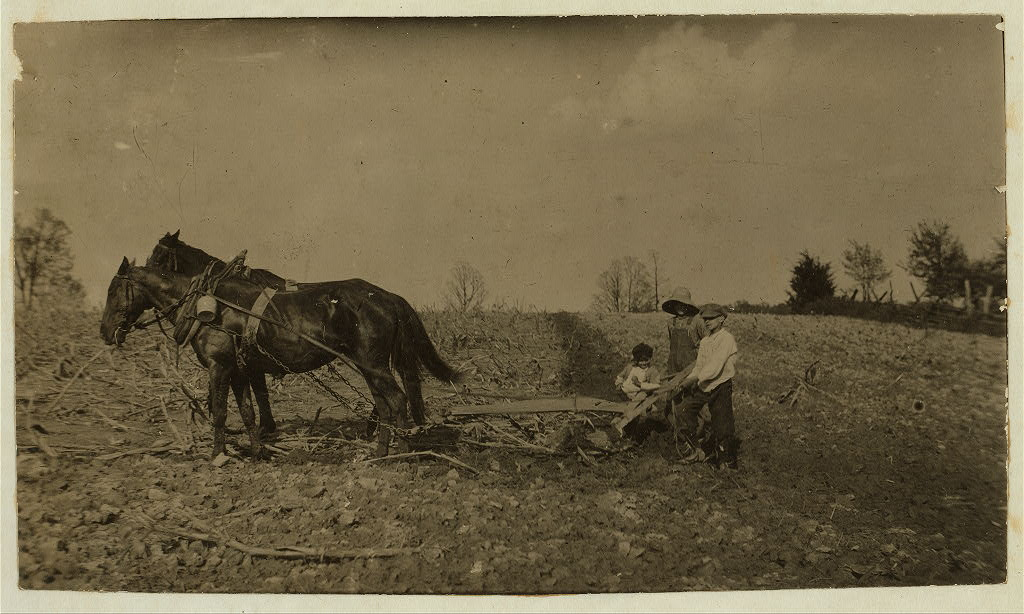 Willie Nall, 11 years old; Raymond Jones, 10 years old; Denver Jones, 5 years old; plowing on farm. They had just finished a job of hauling. Lewis Wickes Hine 19162