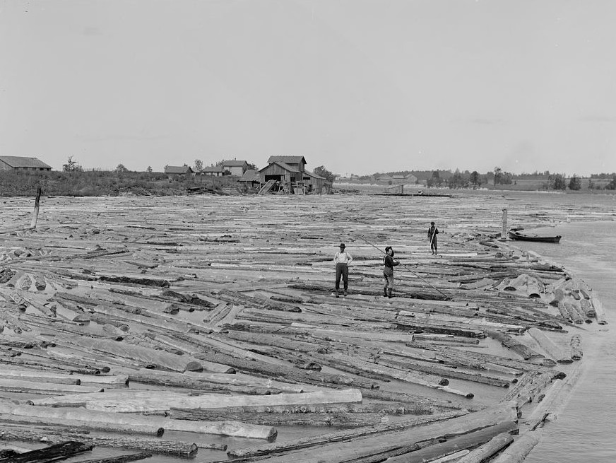 Among the lumberjacks, Northern Michigan Detroit publishing ca. 1900