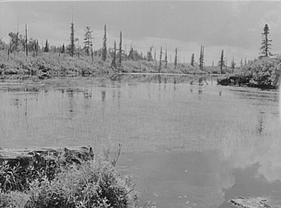Baraga County, Michigan. Upper penninsula by John Vachon 1941