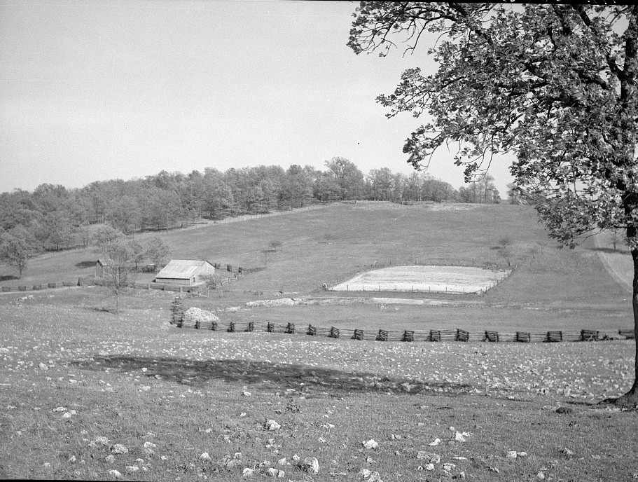 Cut-over bottom land badly eroded through faulty drainage. Meramec Forest project. Salem, Missouri by Carl Mydans May 1936