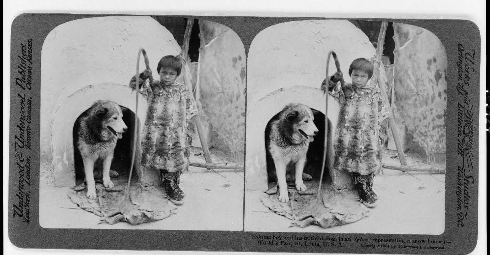 Eskimo boy and his faithful dog, in an igloo (representing a snow-house)--World's Fair, St. Louis, U.S.A.