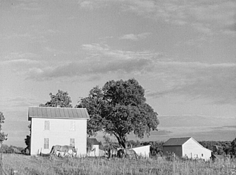 Farmhouse. Ionia County, Michigan