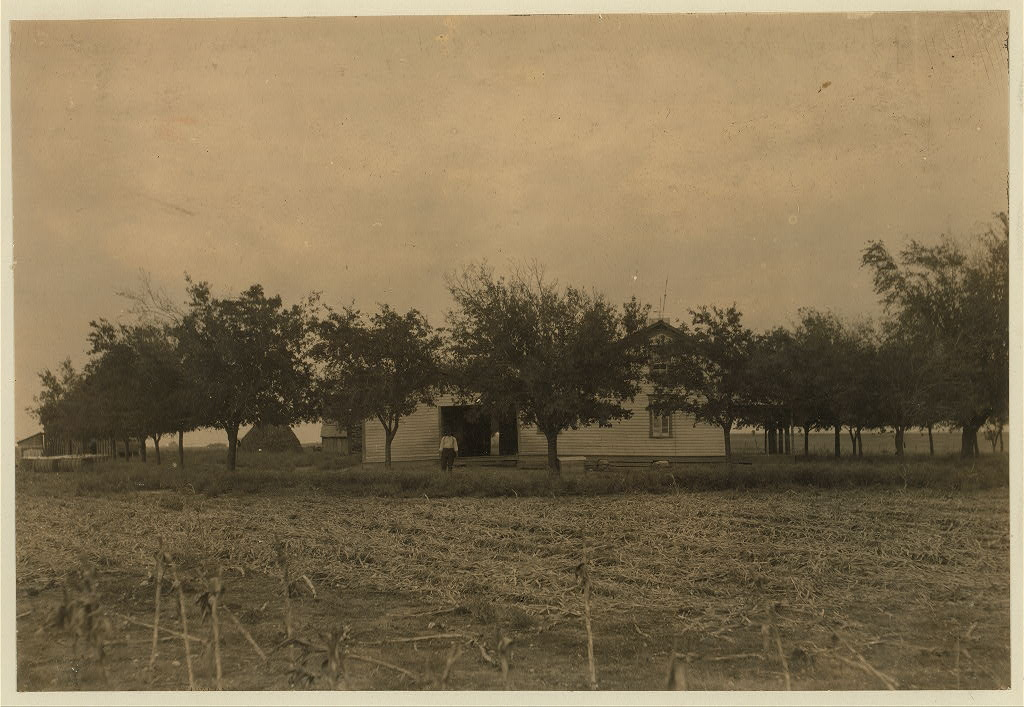 Lewis Wicke hine 1913 - Girard farm, near West. A well-to-do French family. Farm well-kept. Location West, Texas.