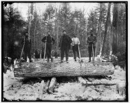 Michigan – was Paul Bunyan a real character who was murdered in Bay City?