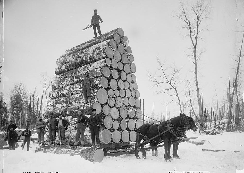 Logging a big load 1888 Detroit Publishing Company